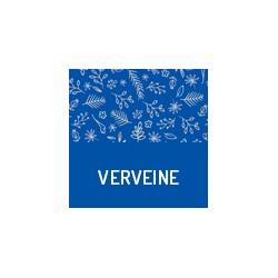 Bio Verbena aus der Provence