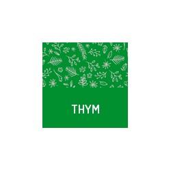 Bio Thymian aus der Provence