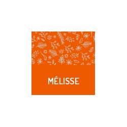 Bio Melisse aus der Provence