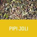 Pipi Joli - Votre vessie vous dira merci - Tisane diurétique bio
