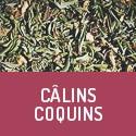 Câlins Coquins - Aphrodisierender Bio-Kräutertee