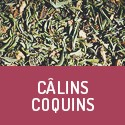 Câlins Coquins - Organic aphrodisiac herbal tea