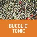Bucolic'Tonic - Le tonus en bonus - Tisane tonifiante bio