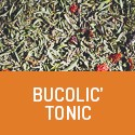 Bucolic'Tonic - Organic tonic herbal tea