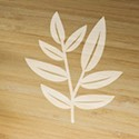 «Bouquet of Lemon Verbena» natural perfumed candle